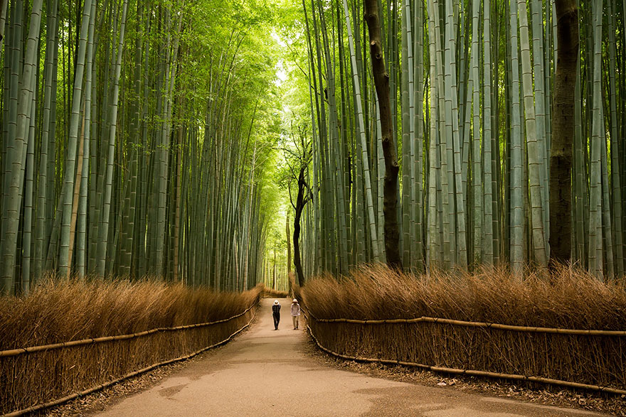 beautiful-places-tourist-attractions-japan-7.jpg