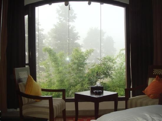 bedroom-forest-view.jpg