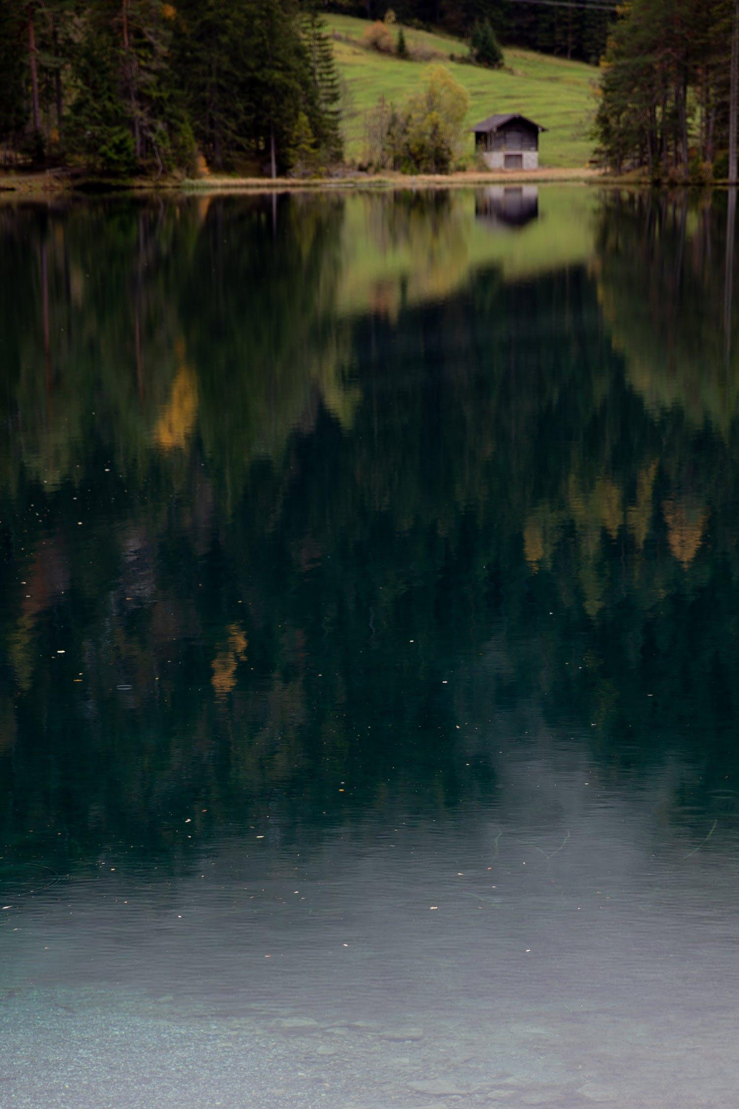 pexels-photo-3934054.jpeg