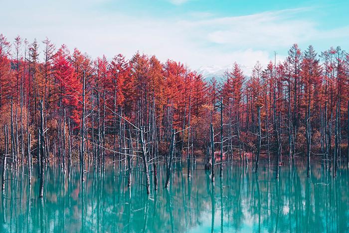 travel-pictures-blue-pond-hokkaido.jpg