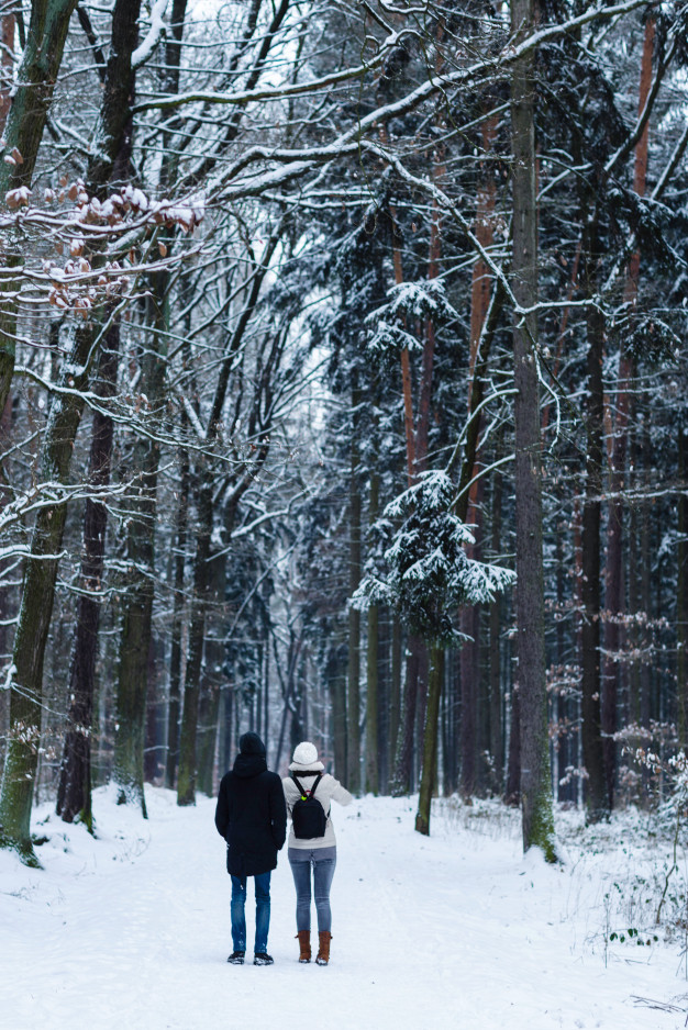 unrecognizable-young-couple-standing-alone-looking-towards-pathway-winter-forest-view-from-bac...jpg