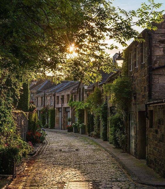 Beautiful streets of Edinburg uploaded by Fred